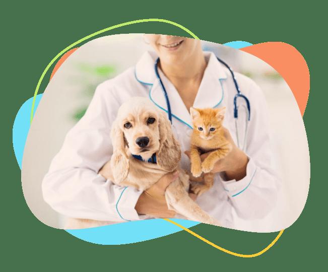 مشاوره دامپزشکی آنلاین