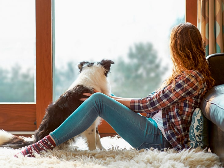درمان ترس از سگ