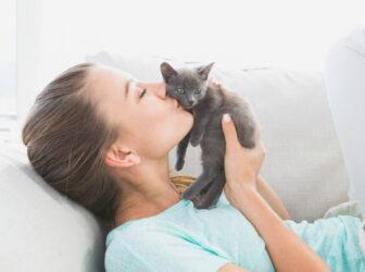 قدم به قدم نگهداری از بچه گربه ۱ روزه تا ۱ ماهه (چطوری بچه گربه ها را زنده نگه داریم؟)