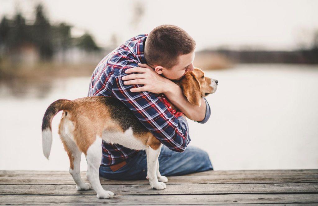 نگهداری از سگ