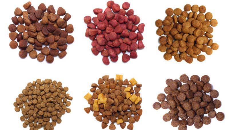 ترکیبات غذای خشک گربه