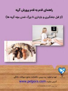 کتاب پرورش گربه