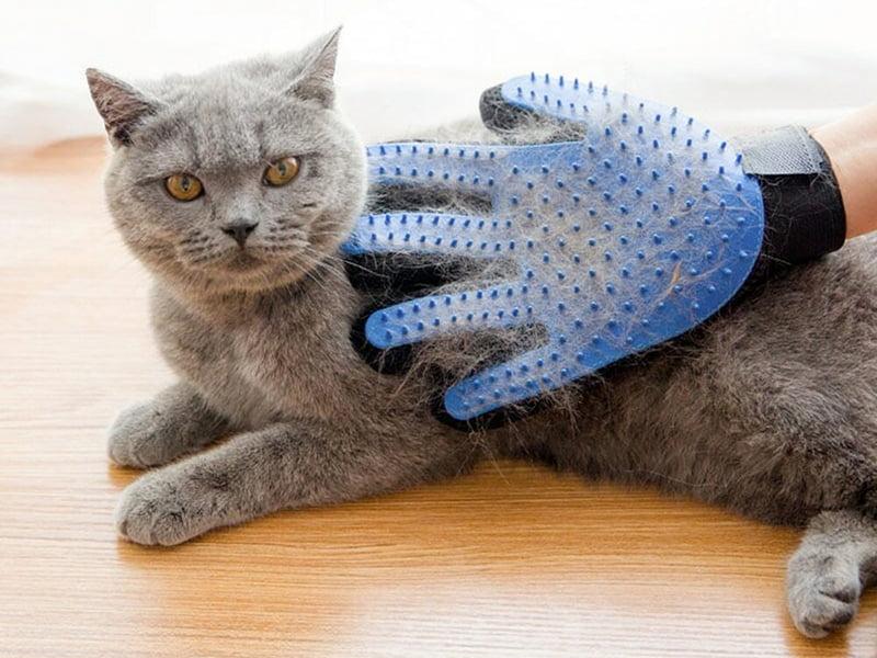 دستکش پرزگیر گربه