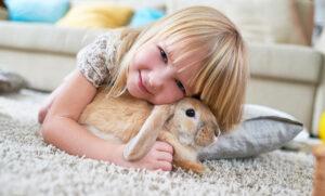 خرگوش و دختر کوچولو