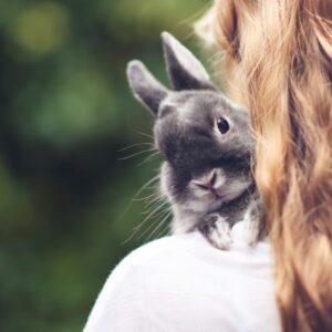 خرگوش در اغوش صاحبش