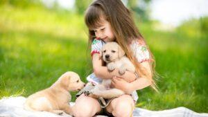سگ گلدن در اغوش دختربچه