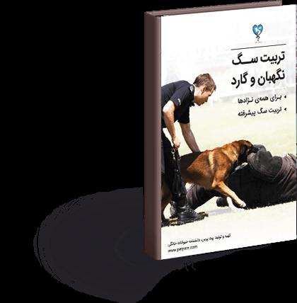 تربیت سگ نگهبان و گارد