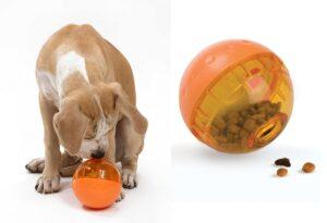 اسباب بازی مدل غذایی