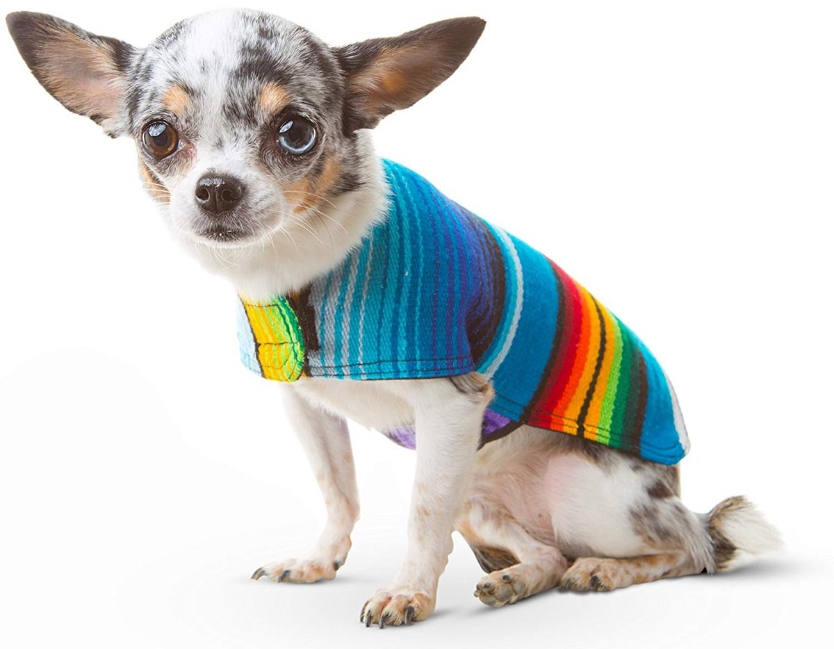 عکس لباس سگ فانتزی