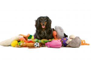 اسباب بازی سگ