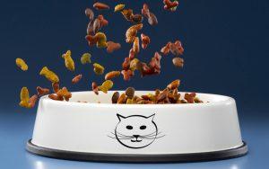 ویژگی غذای گربه