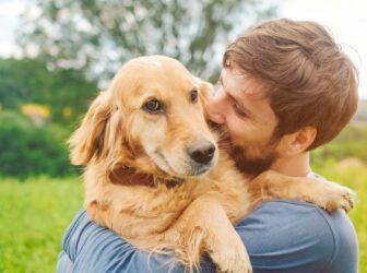 راهنمای کامل خرید وسایل سگ (چه چیزهایی و از کجا بخریم؟)