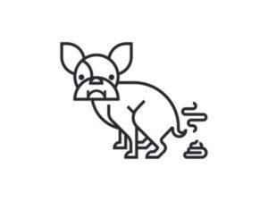 مدفوع طبیعی سگ