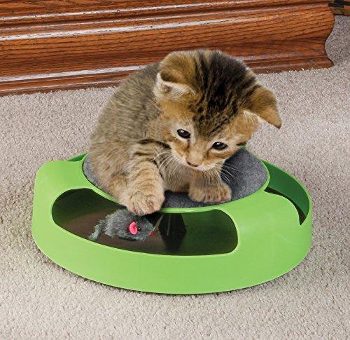 اسباب بازی اسکرچر گربه