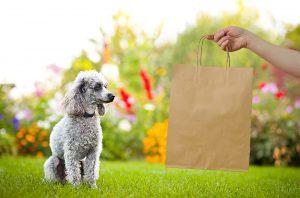 خرید برای حیوان خانگی