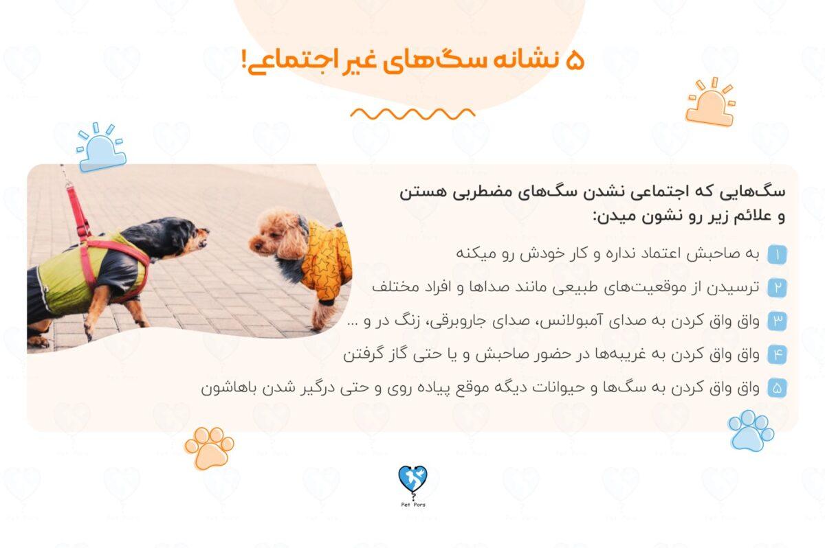 اضطراب؛ یکی از نشانه های سگ های غیر اجتماعی
