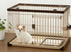 راهنمای انتخاب و خرید باکس و جای خواب سگ
