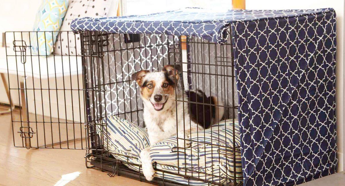 قفس فلزی برای سگ