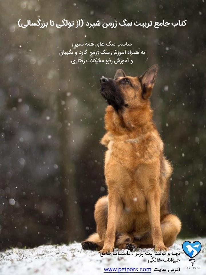 کتاب الکترونیکی تربیت سگ ژرمن شپرد (از توله تا نگهبان)