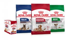 غذاهای رویال براساس جثه سگ