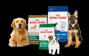محصولات اختصاصی سگ رویال