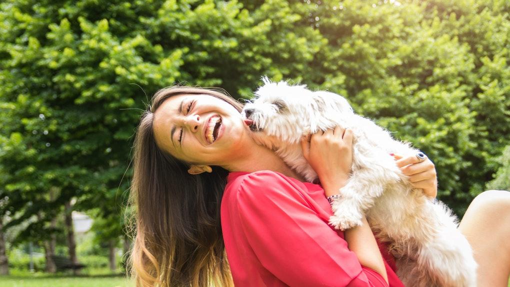 آشنایی با ۱۴ حرکت عجیب سگ و معنی آنها