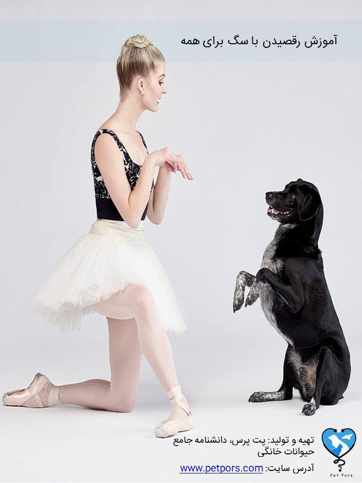 آموزش رقص با سگ