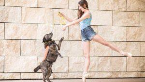 رقصیدن با سگ