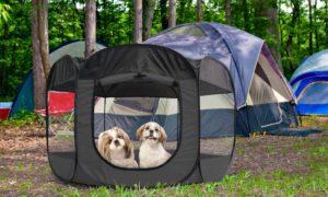 پارک چادری برای سگ