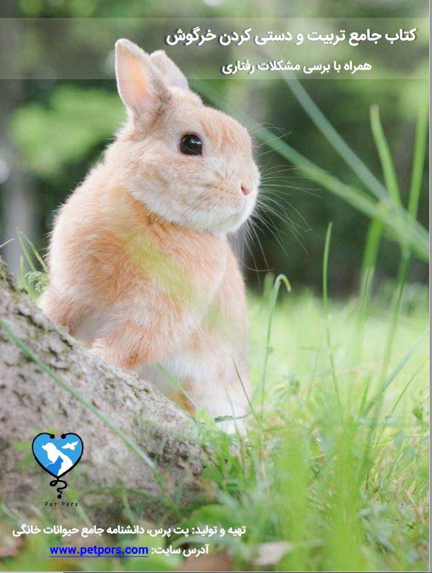 ایبوک راهنمای تربیت و دستیکردن خرگوش + بررسی مشکلات رفتاری