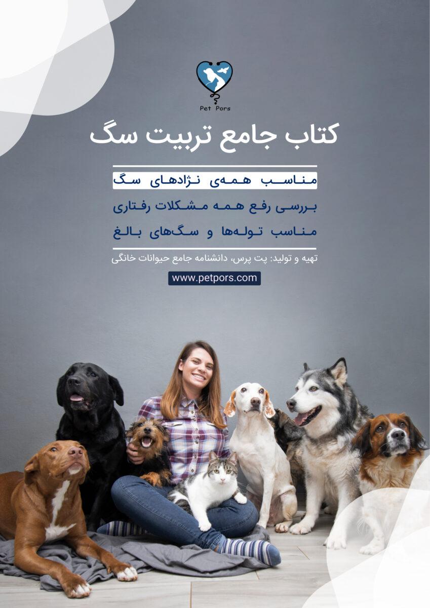 راهنمای جامع تربیت سگ ، از تولگی تا بزرگسالی (همه نژادها)