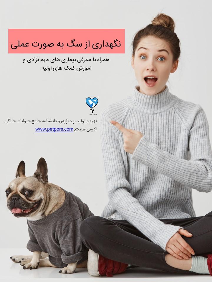 کتاب الکترونیکی راهنمای نگهداری از سگ به صورت عملی و کاربردی