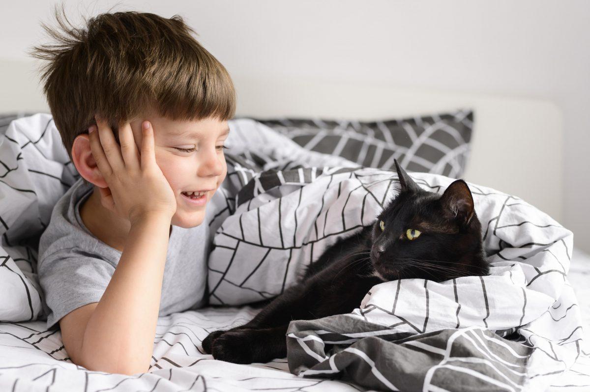 گربه و پسر بچه در تخت
