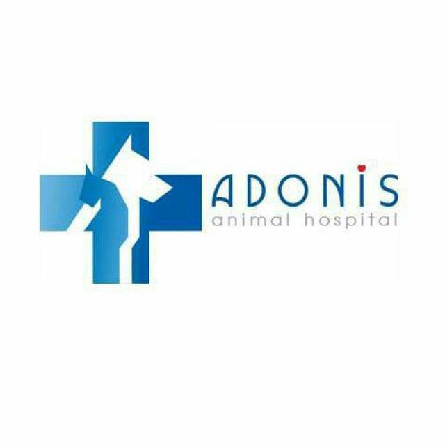 بیمارستان دامپزشکی آدونیس