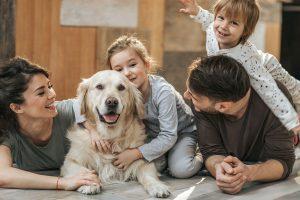 مراقبت از سگ
