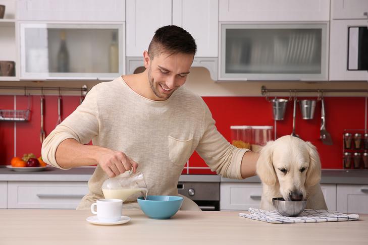 آشپزی برای سگ
