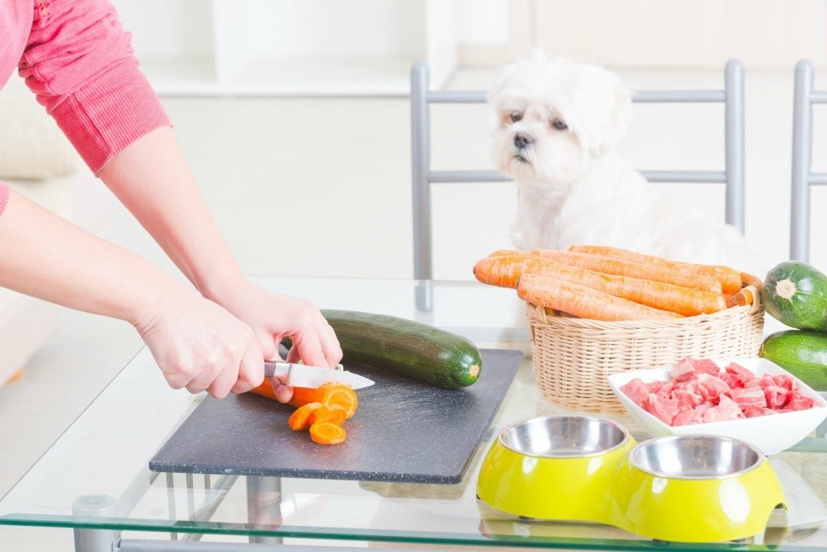 ترکیبات غذای خانگی سگ