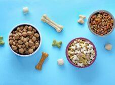 طرز تهیه غذای خشک برای سگ در منزل