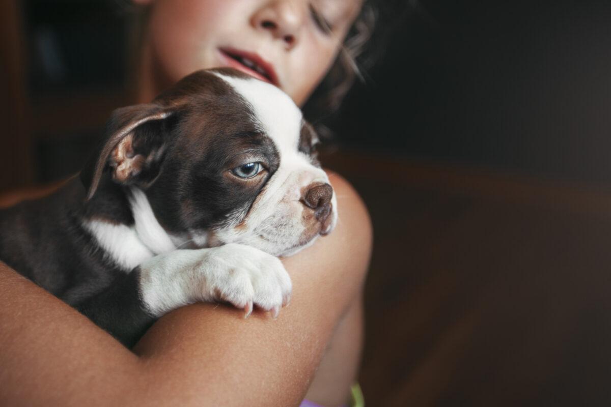 تربیت توله سگ برای دستشویی