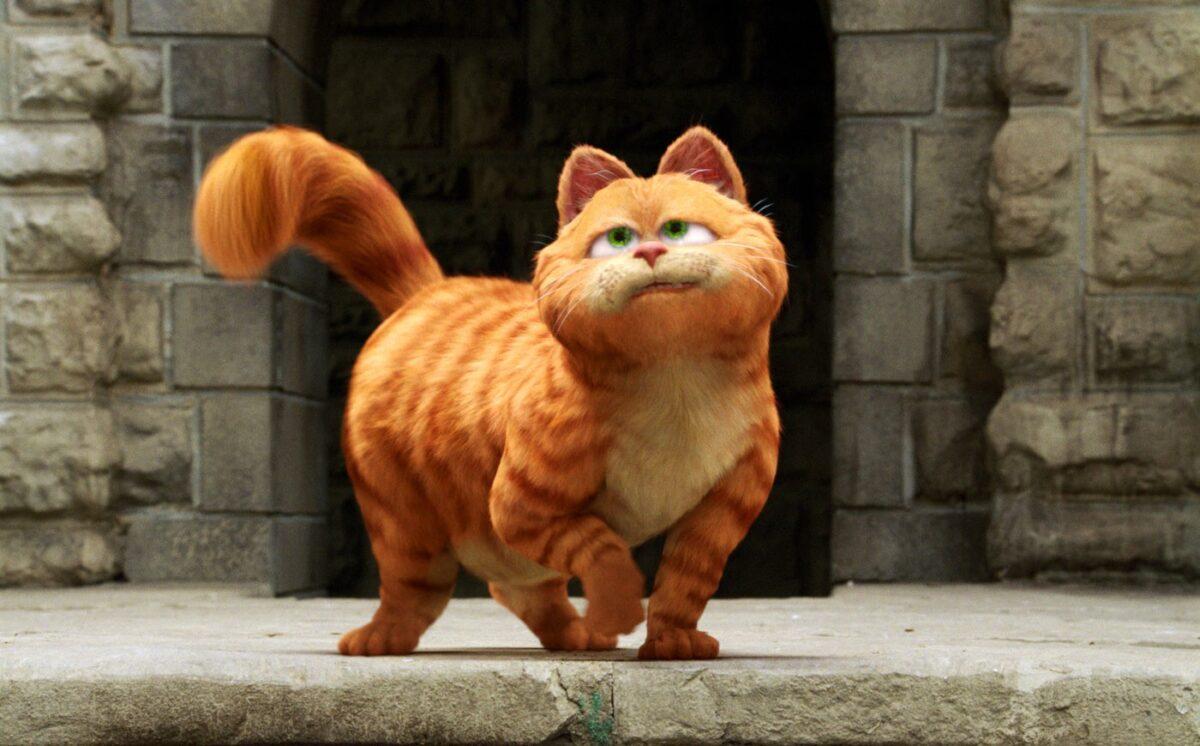 گربه گارفیلد