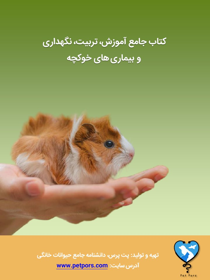 کتاب خوکچه هندی