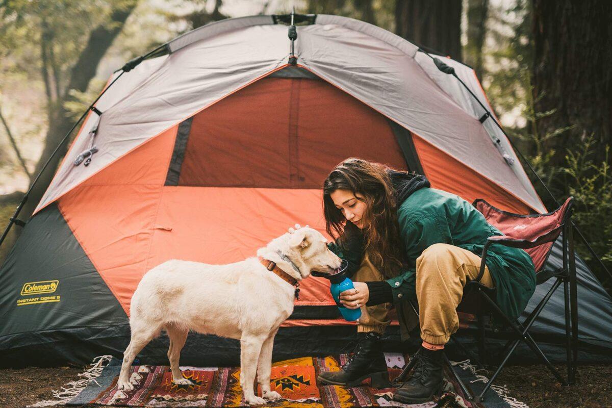 ظرف غذای سگ مسافرتی