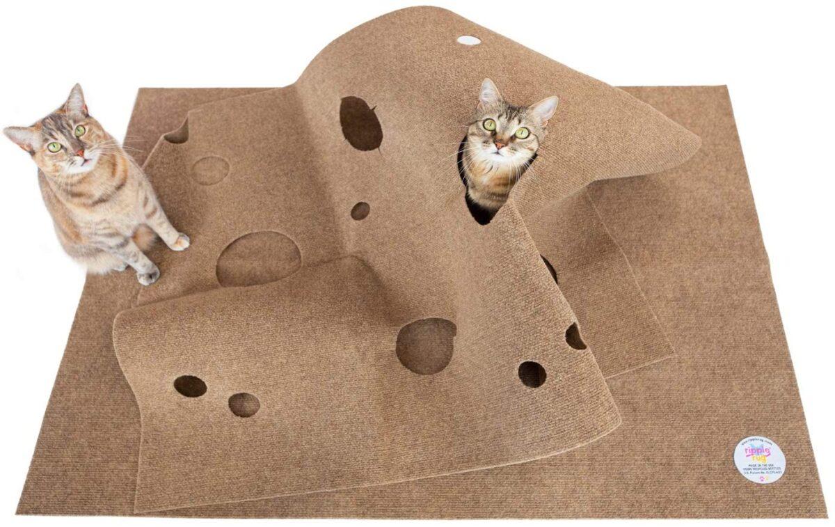 ساخت تونل گربه با موکت