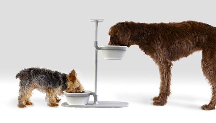 ظرف غذای سگ پایه دار
