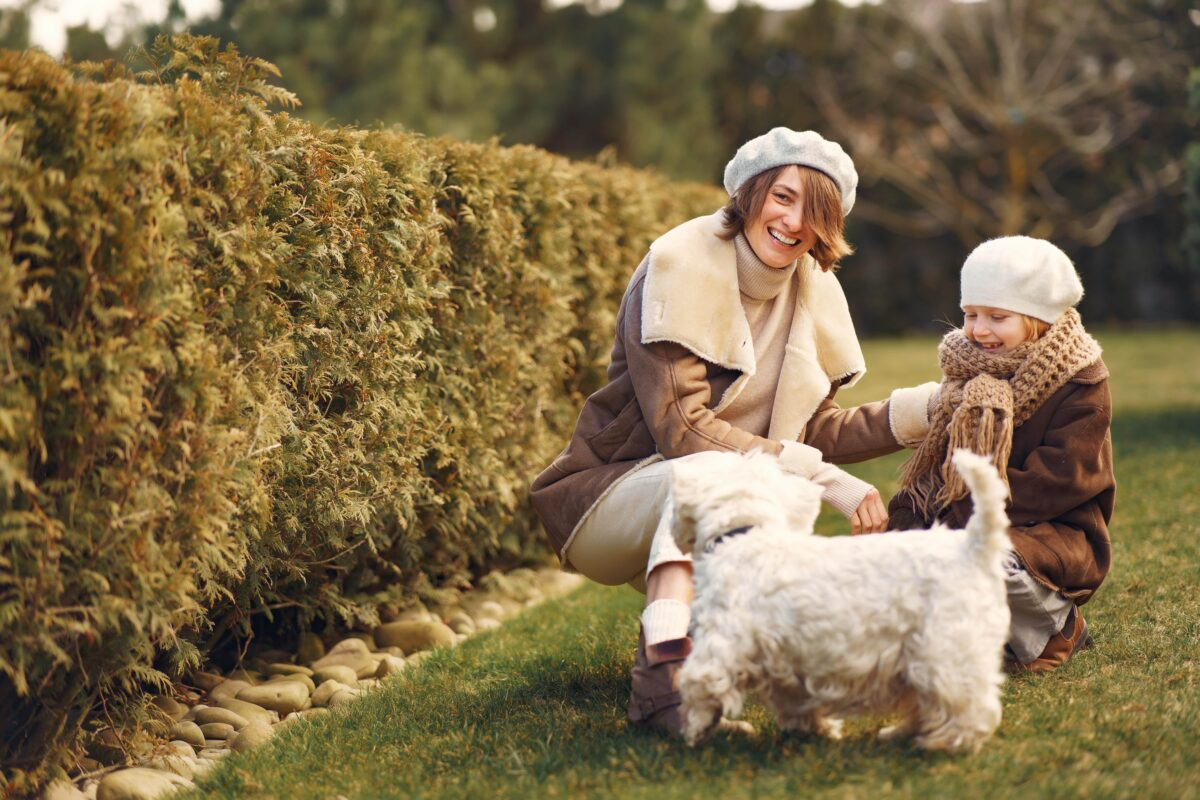 سگ بیچون فرایز در حال بازی با مادر و کودک در فضای باز