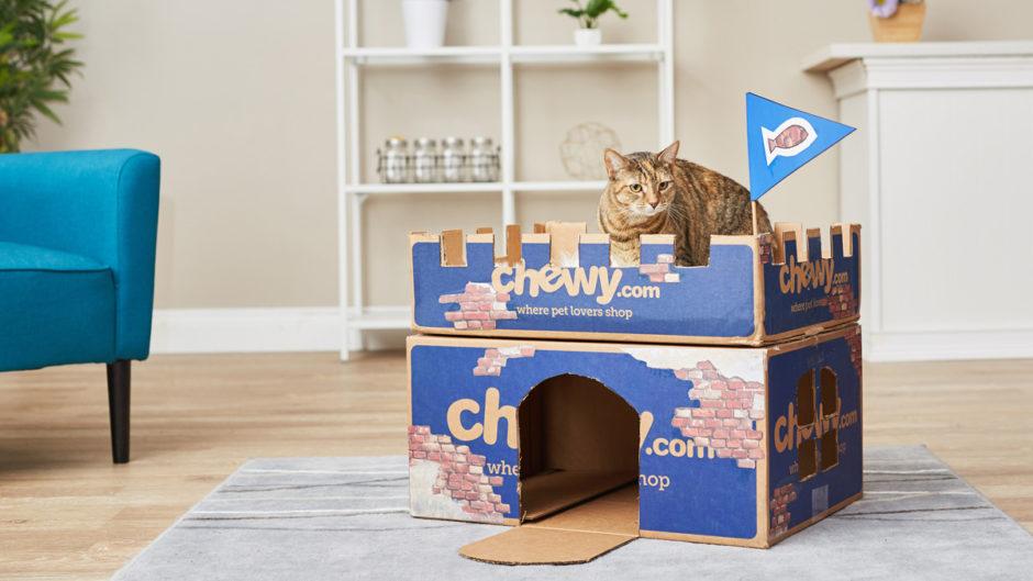 ساخت تونل گربه با کارتن