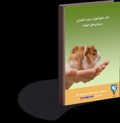 کتاب جامع تربیت، نگهداری اصولی و بیماریهای خوکچه هندی