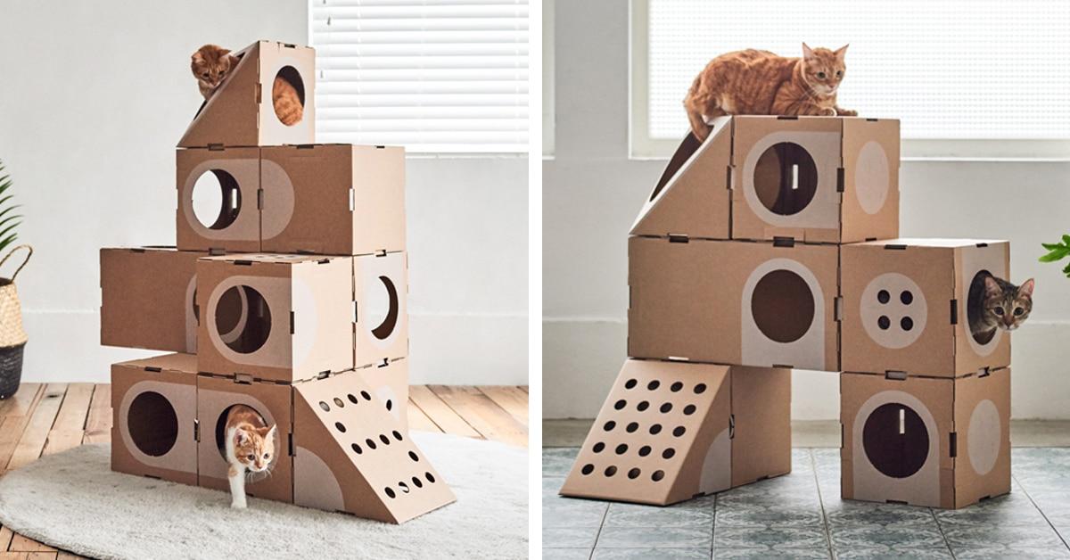 ساخت تونل بازی گربه