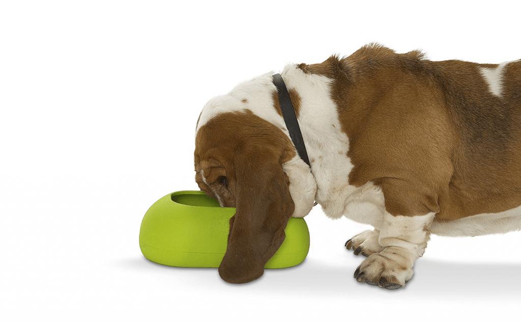 ظرف غذا برای سگهای گوش بلند