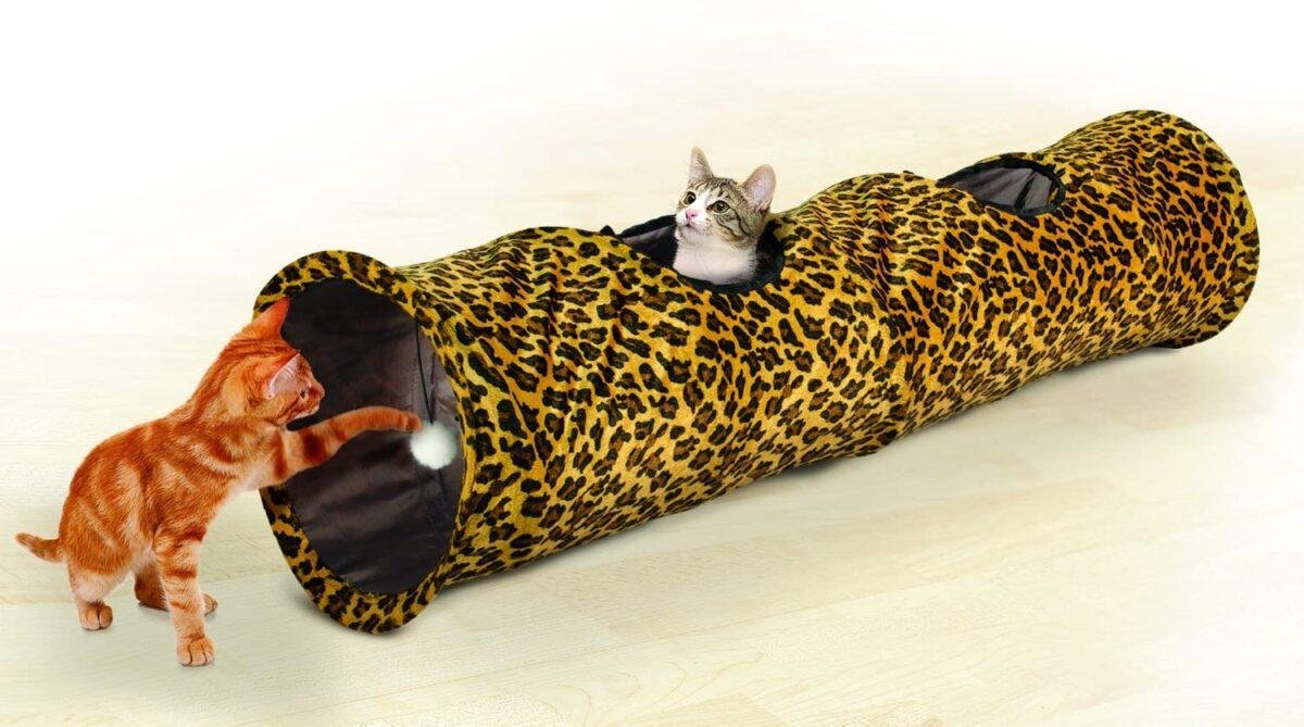 دو گربه در حال بازی با تونل